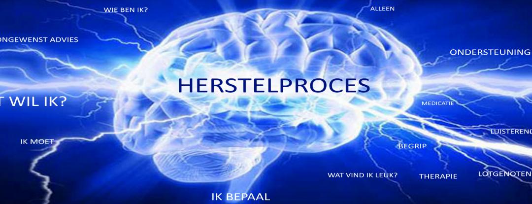 Stichting Herstelproces Zuidveen